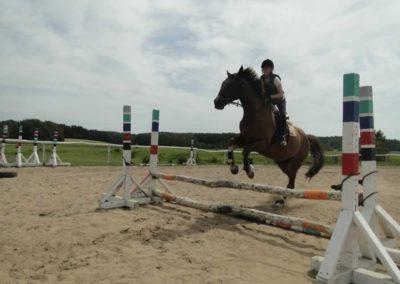oboz-konie-2014-7-0021