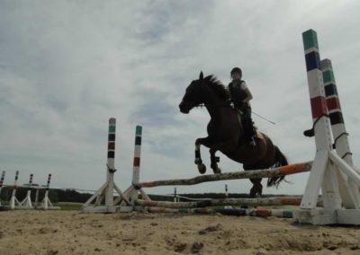oboz-konie-2014-7-0023