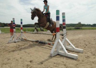 oboz-konie-2014-7-0028
