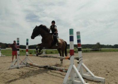 oboz-konie-2014-7-0030