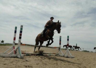 oboz-konie-2014-7-0031