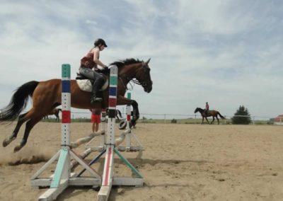 oboz-konie-2014-7-0039