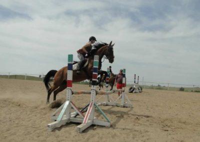 oboz-konie-2014-7-0042