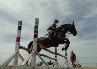 oboz-konie-2014-7-0051