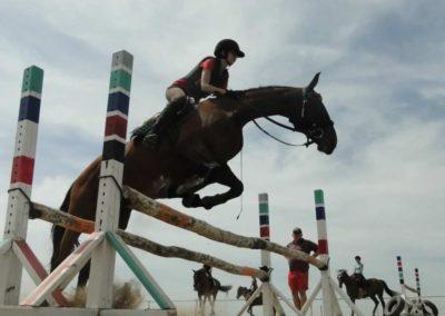 oboz-konie-2014-7-0052