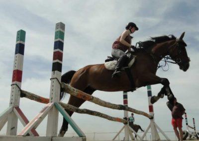 oboz-konie-2014-7-0053