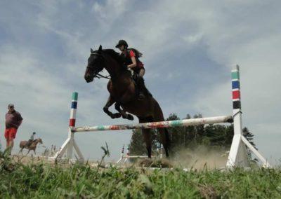 oboz-konie-2014-7-0054