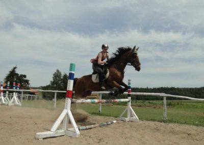 oboz-konie-2014-7-0055