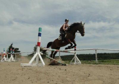 oboz-konie-2014-7-0059