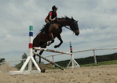 oboz-konie-2014-7-0067
