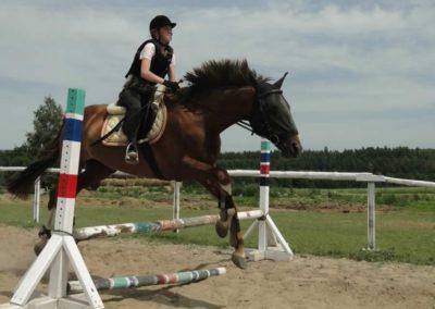 oboz-konie-2014-7-0069