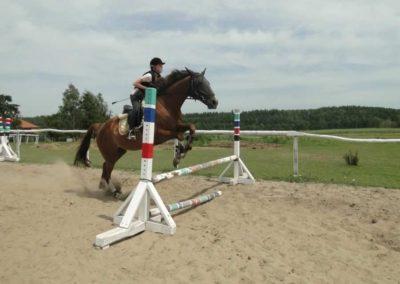 oboz-konie-2014-7-0070
