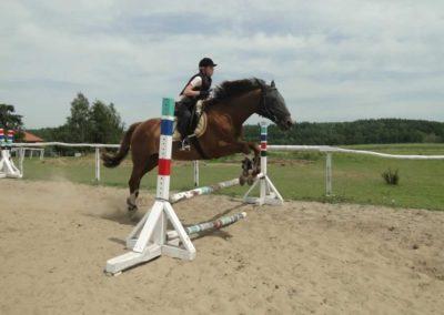 oboz-konie-2014-7-0071