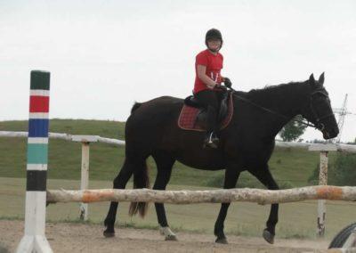 oboz-konie-2014-7-0077