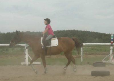 oboz-konie-2014-7-0080