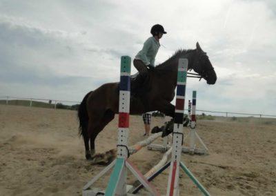 oboz-konie-2014-7-0082