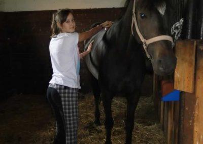 oboz-konie-2015-1-0002