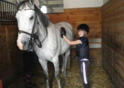 oboz-konie-2015-1-0006