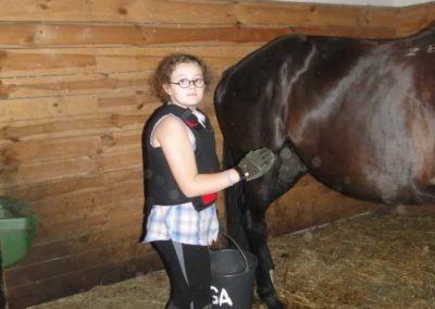 oboz-konie-2015-1-0007