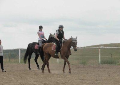 oboz-konie-2015-1-0012