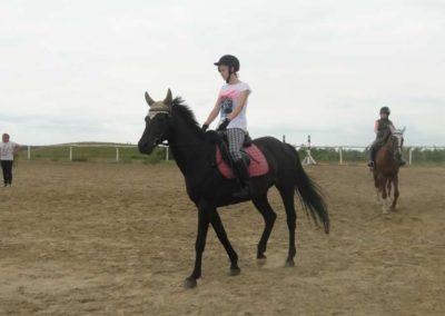 oboz-konie-2015-1-0013