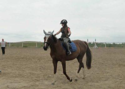 oboz-konie-2015-1-0014