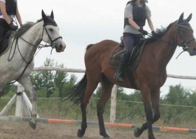 oboz-konie-2015-1-0016