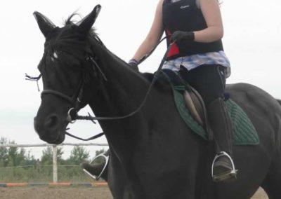 oboz-konie-2015-1-0024