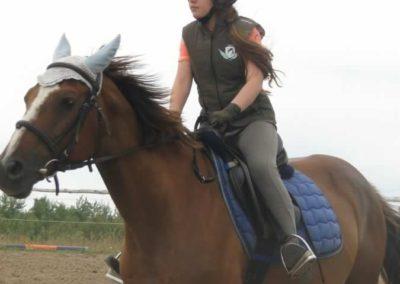 oboz-konie-2015-1-0025