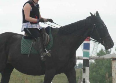 oboz-konie-2015-1-0029