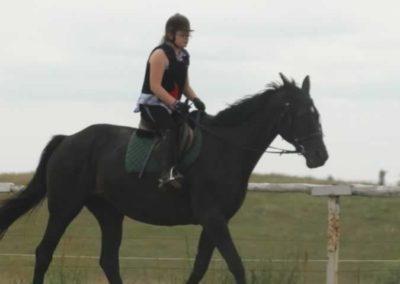 oboz-konie-2015-1-0036