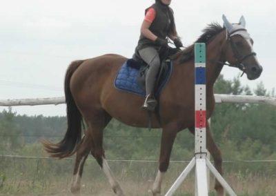 oboz-konie-2015-1-0039