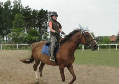oboz-konie-2015-1-0043