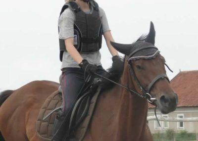 oboz-konie-2015-1-0044