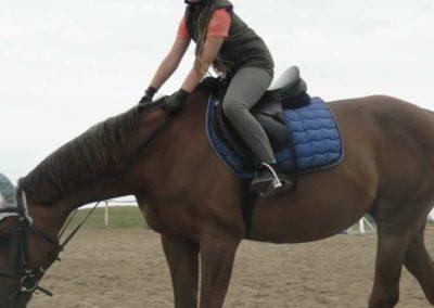 oboz-konie-2015-1-0050