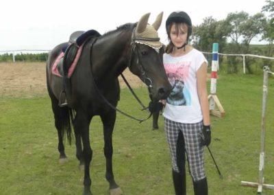oboz-konie-2015-1-0064