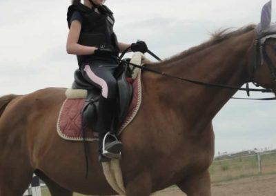 oboz-konie-2015-1-0070