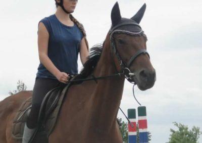 oboz-konie-2015-1-0074