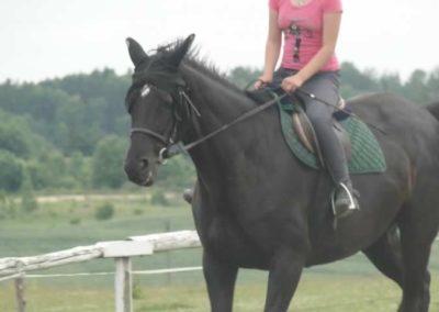 oboz-konie-2015-1-0076