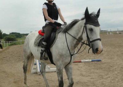 oboz-konie-2015-1-0101