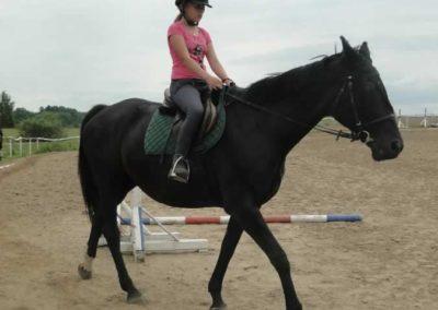 oboz-konie-2015-1-0102
