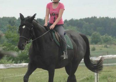 oboz-konie-2015-1-0115