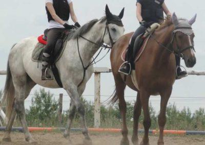 oboz-konie-2015-1-0125