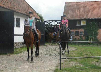 oboz-konie-2015-1-0135