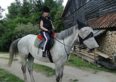 oboz-konie-2015-1-0137