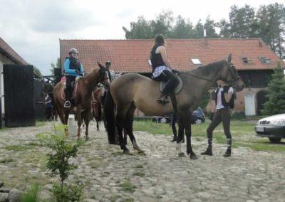 oboz-konie-2015-1-0139