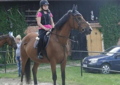 oboz-konie-2015-1-0141