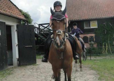 oboz-konie-2015-1-0143