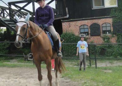 oboz-konie-2015-1-0144