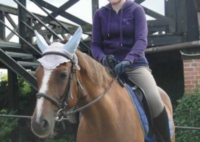 oboz-konie-2015-1-0145